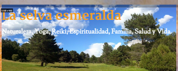 p_laselvaesmeralda