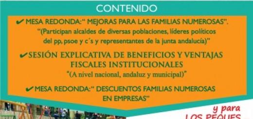 Cartel primer encuentro provincial de familias numerosas sevilla 2015